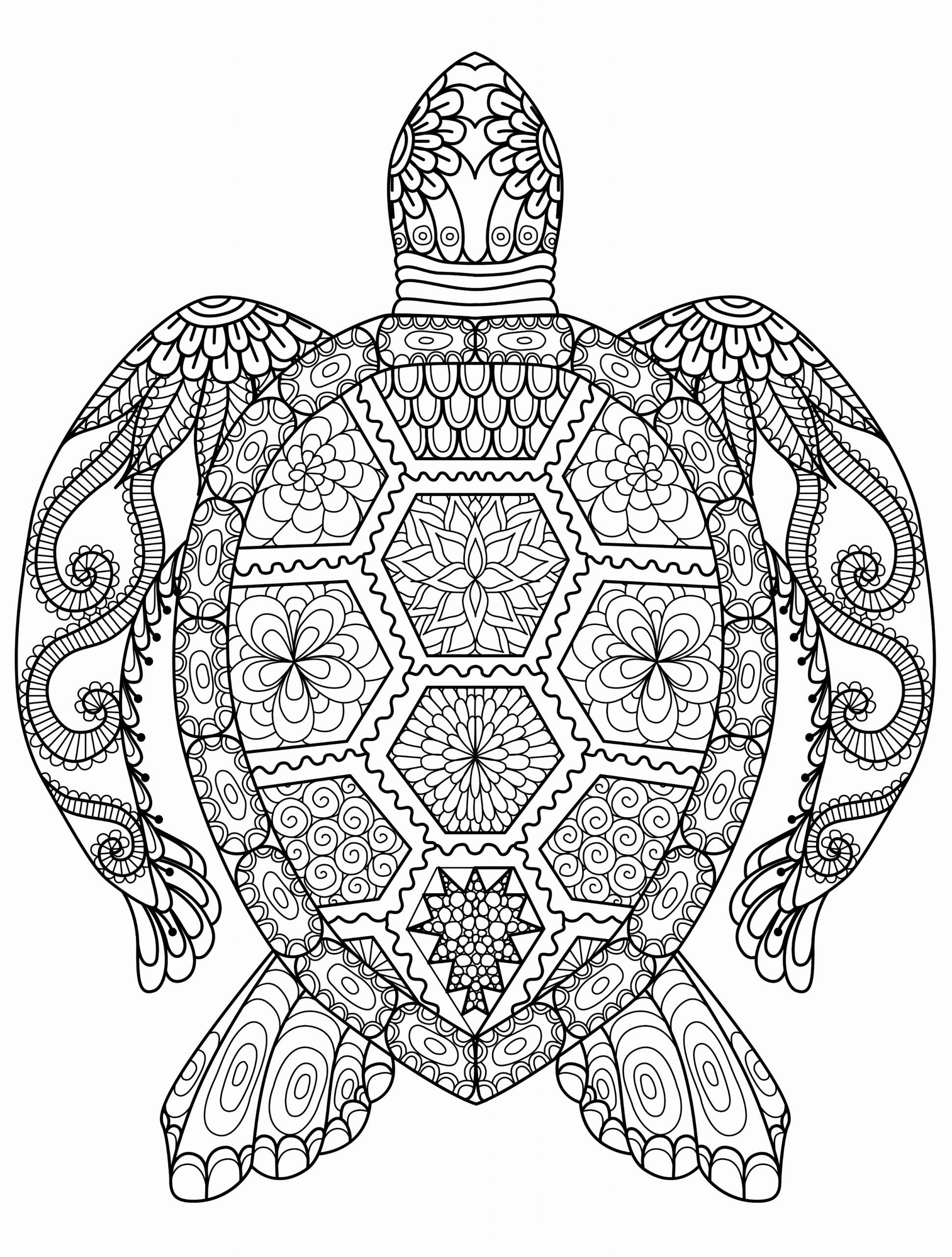 Animals Coloring Book Pdf Free Download Unique Sea Turtle Printable Coloring Pages At Getdra Turtle Coloring Pages Animal Coloring Books Mandala Coloring Pages