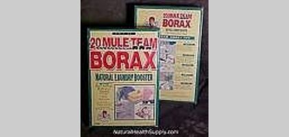 How To Get Rid Of Fleas In Your Carpet With Borax And White