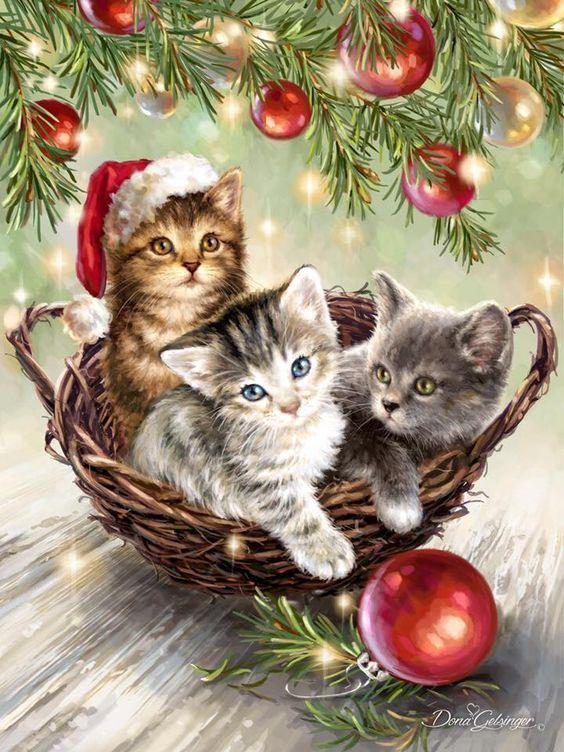 Krásné a klidné svátky vánoční přeje Maruš s rodinou. | Cartes de