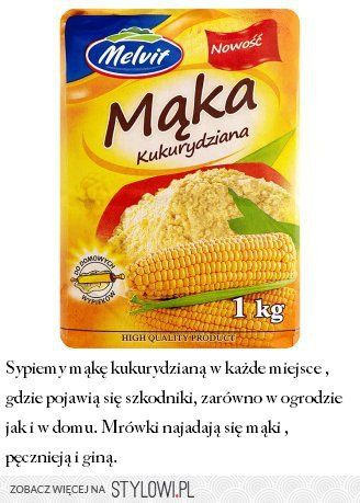 Sposob Na Mrowki Na Stylowi Pl Snack Recipes Snacks Food