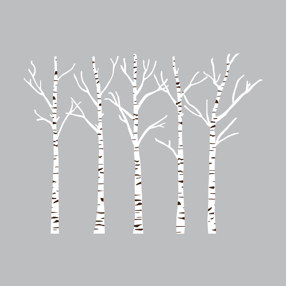 Birch Trees Wall Decals Set Shop Decals From Dana Decals Birch Tree Wall Decal Tree Wall Decal Birch Tree Art