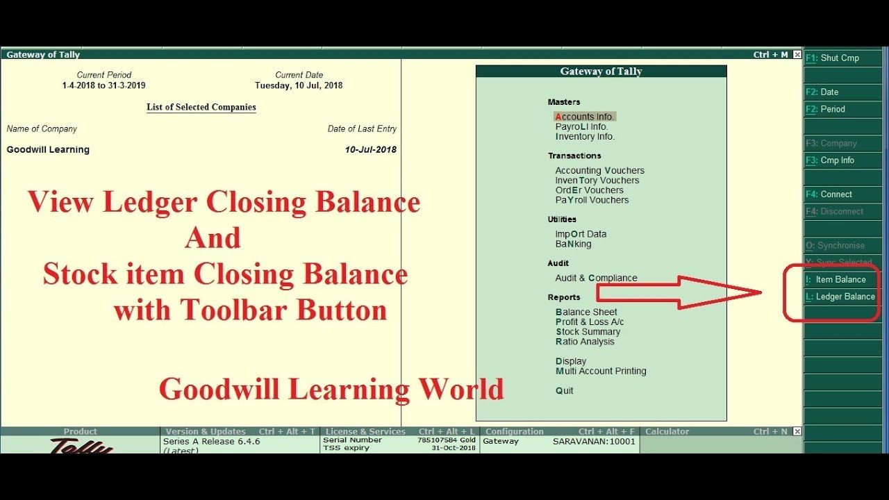 Tally TDL to View item closing Stock and ledger Closing Balance from