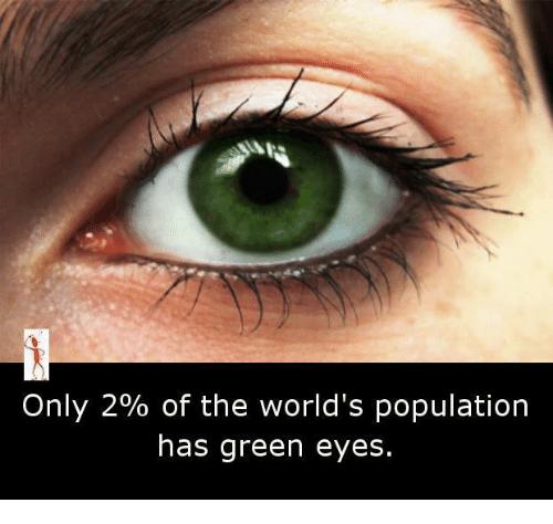 25 Best Memes About Green Eyes Green Eyes Memes Green Eyes Eyes Green