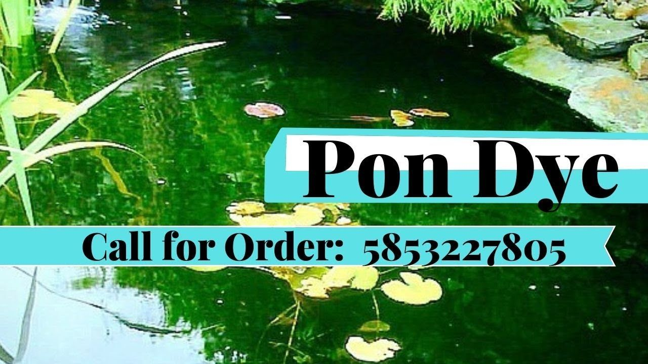 Smithcreek Pond Dye Products Call Now 5853227805 With Images Large Water Features Fish Farming Pond