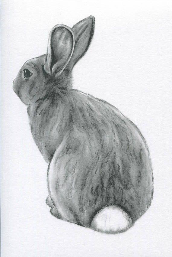 Bunny Art, ORIGINAL Charcoal 8