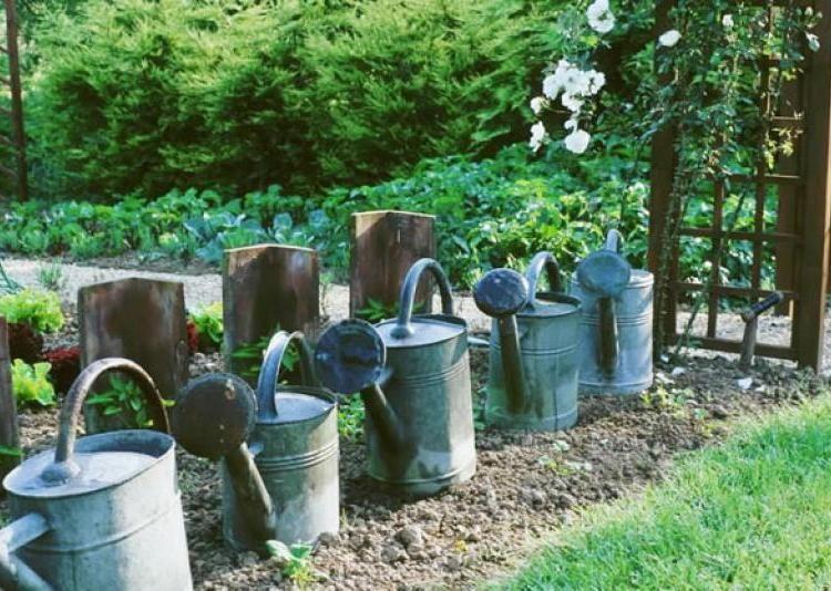 Une haie d\'arrosoirs   Arrosoir, Bordure de jardin et Bordure