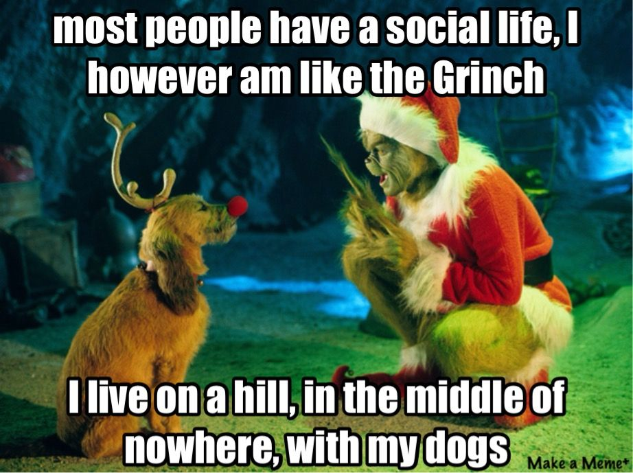 The grinch Grinch, Jim carrey, Dog poster