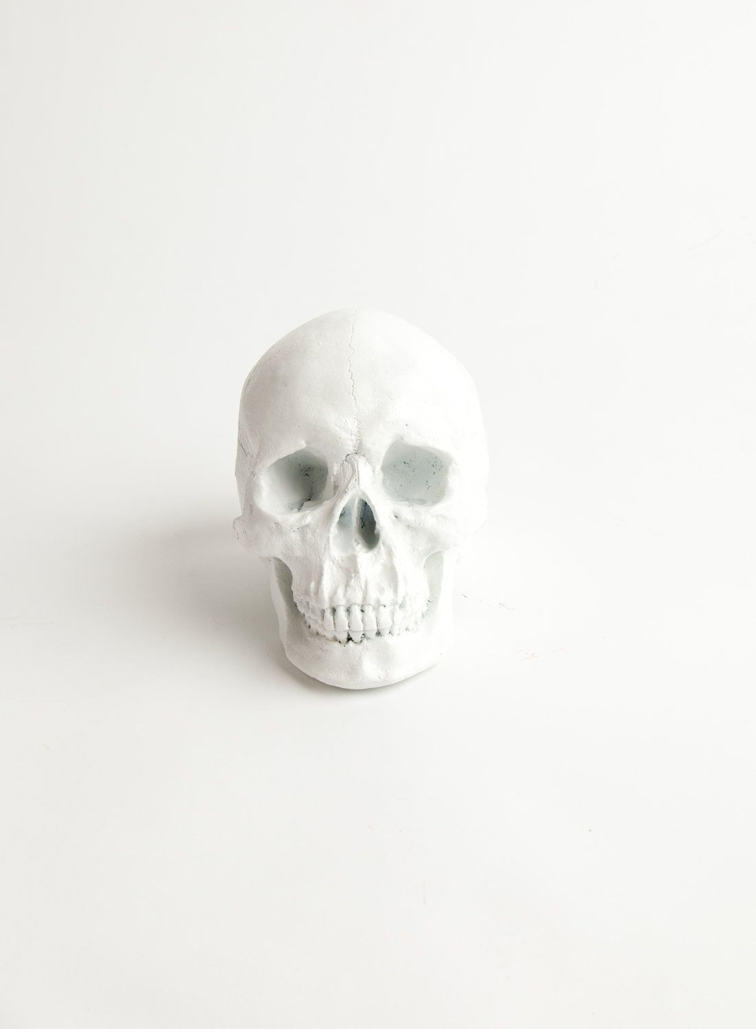 skull - I made one like this by buying a plastic skull from 'The Warehouse' and spray painted it with gloss white - i love it!