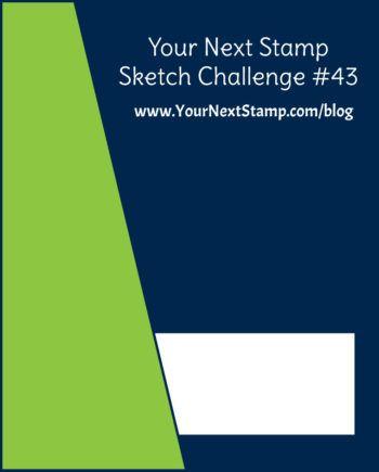 YNSSketch43