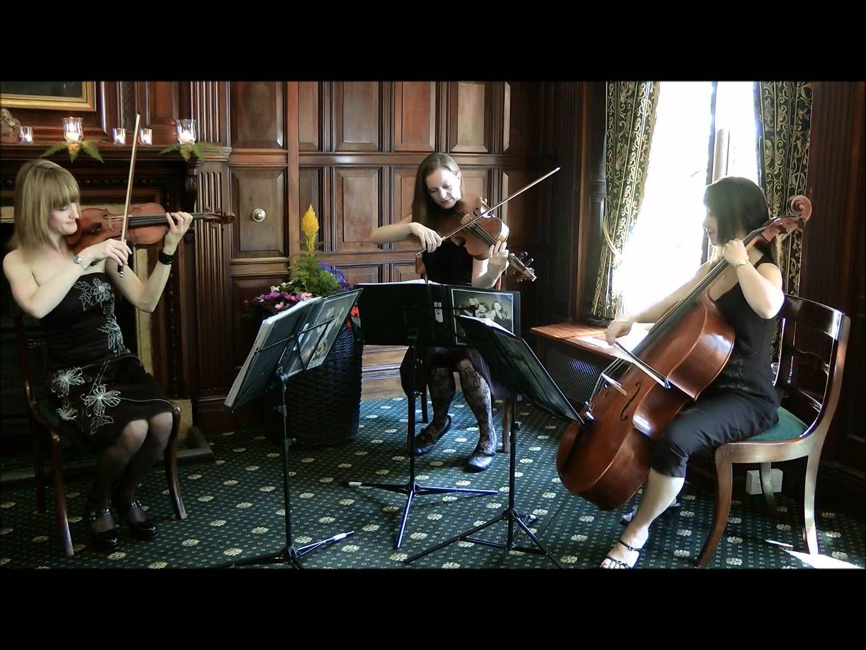 Canon in D Major in Pachelbel Wedding ceremony music