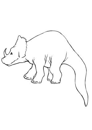 Ausmalbild Junger Triceratops Zum Ausmalen Ausmalbilder Ausmalbilderdinosaurier Malvorlagen Ausmalen Ausmalen Ausmalbild Dinosaurier Ausmalbilder