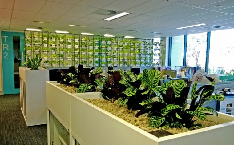Oficina con plantas jard n pinterest jardines for Jardin vertical oficina
