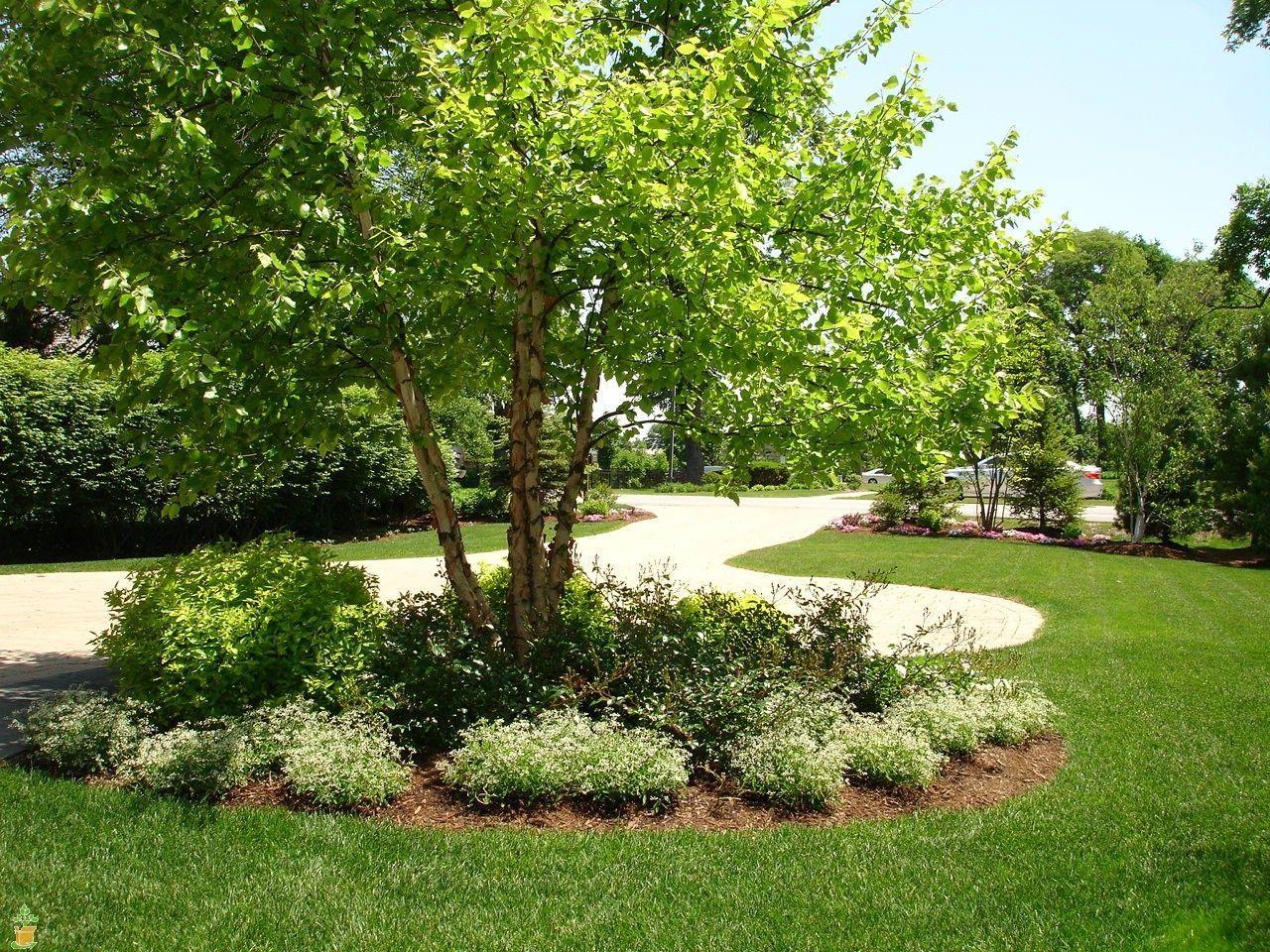 Change Your Summer Back Yard Lanscaping Ideas  Gardening