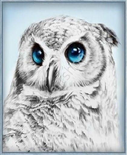 Ушастая сова, картина раскраска по номерам, размер 40*50 ...
