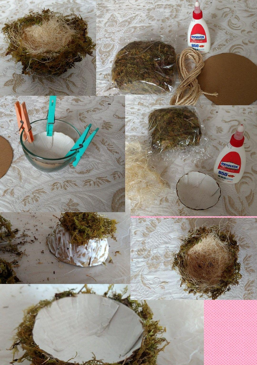 Nido Casero Materiales Cart N Musgo Mecate Resistol Agua Y  ~ Quitar Pintura Plastica De La Ropa