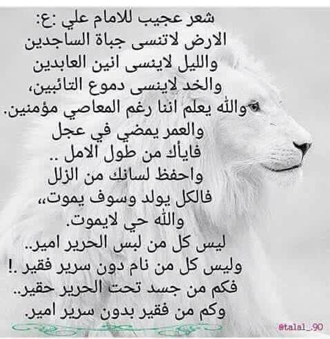 شعر عجيب لمولانا أمير المؤمنين Arabic Quotes Arabic Words Words