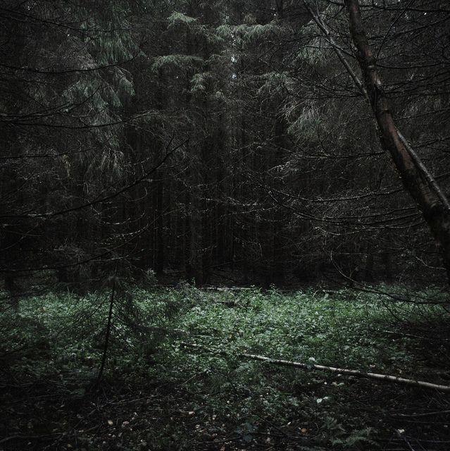 Words bespeak a loneliness | Flickr - Photo Sharing!
