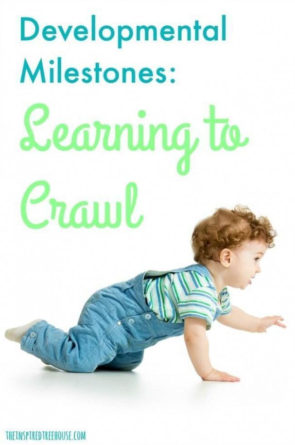 The Inspired Treehouse Learning to crawl is an The Inspired Treehouse Learning to crawl is an