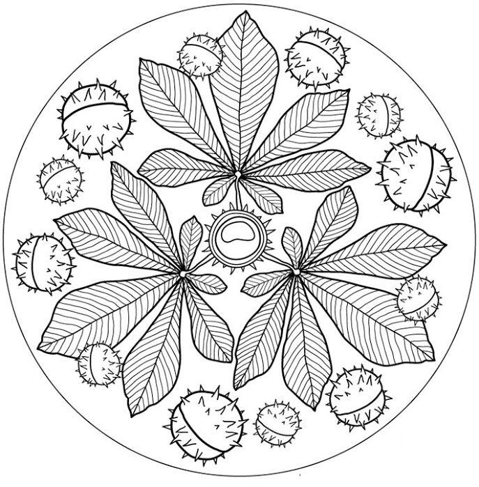 Kleurplaten Herfst Mandala.Fab Autumn Fall Mandala Free Printable Perfect For Colouring In
