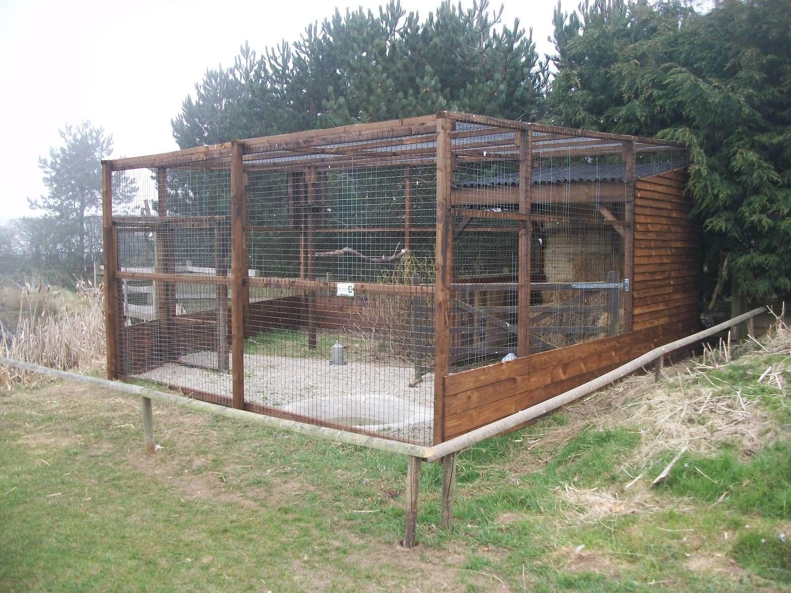 Zoo aviary Aviaries Pinterest Zoos Bird and Bird aviary
