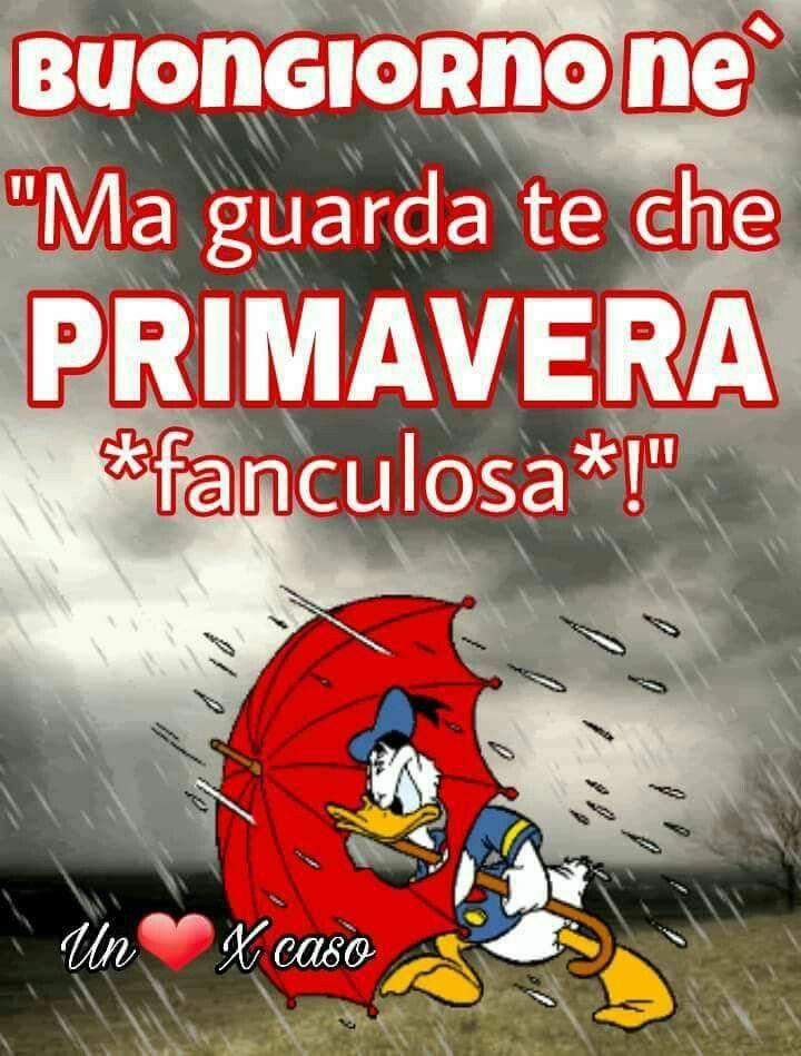 Primavera pioggia sogni good morning good day e good for Buongiorno sms divertenti