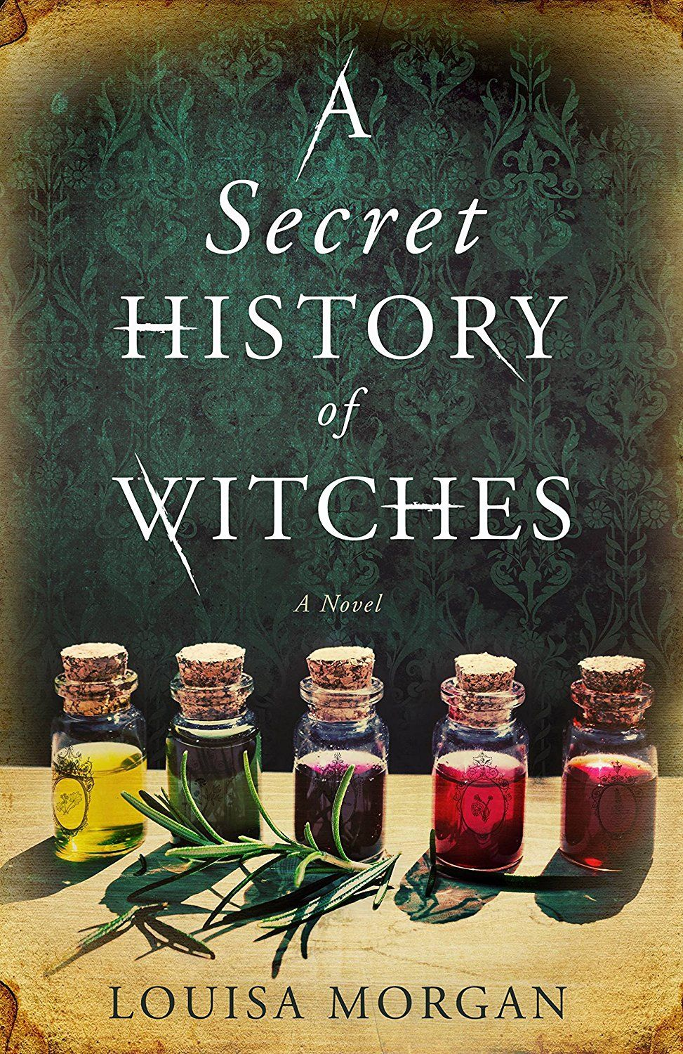 A Secret History of Witches eBook: Louisa Morgan: Amazon ca: Kindle