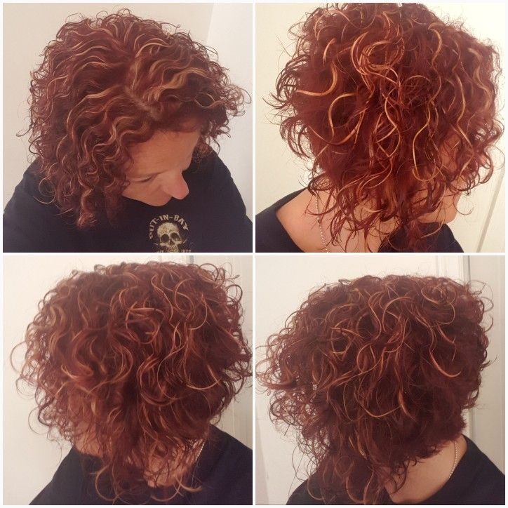 Short Curly Asymmetrical Bob Red Violet With Blonde Highlights Red Hair With Blonde Highlights Red Blonde Hair Red Curly Hair
