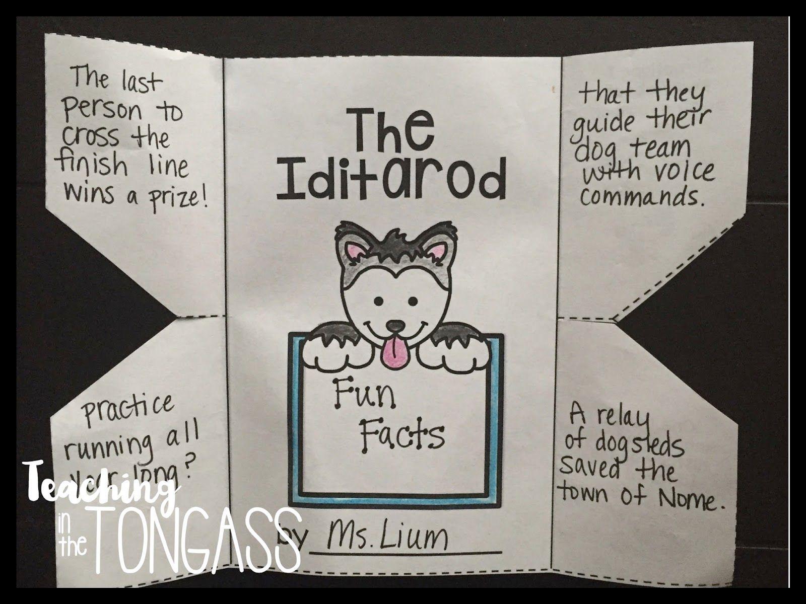 Iditarod Activities For The Classroom