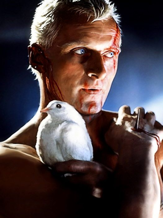 SD7648 Blade Runner Rutger Hauer Pigeon SC Fi Movie 24x18 Print ...