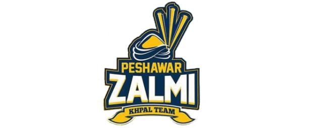 New Peshawar Zalmi Logo 2018 Psl Logos Sport Team Logos Psl