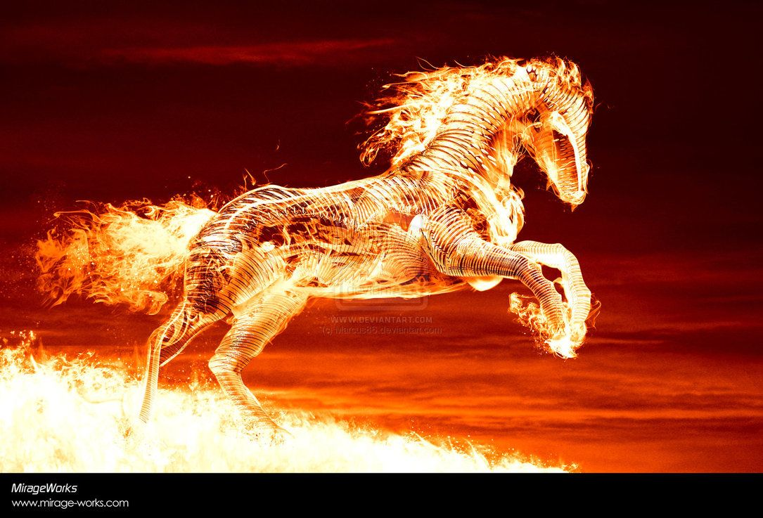 Fire Horse By Marcus86 On DeviantART