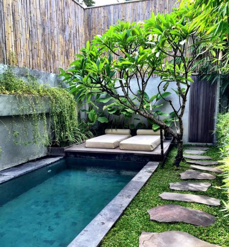 Tropical garden design: everything you need to know ... on Tropical Small Backyard Ideas id=14309