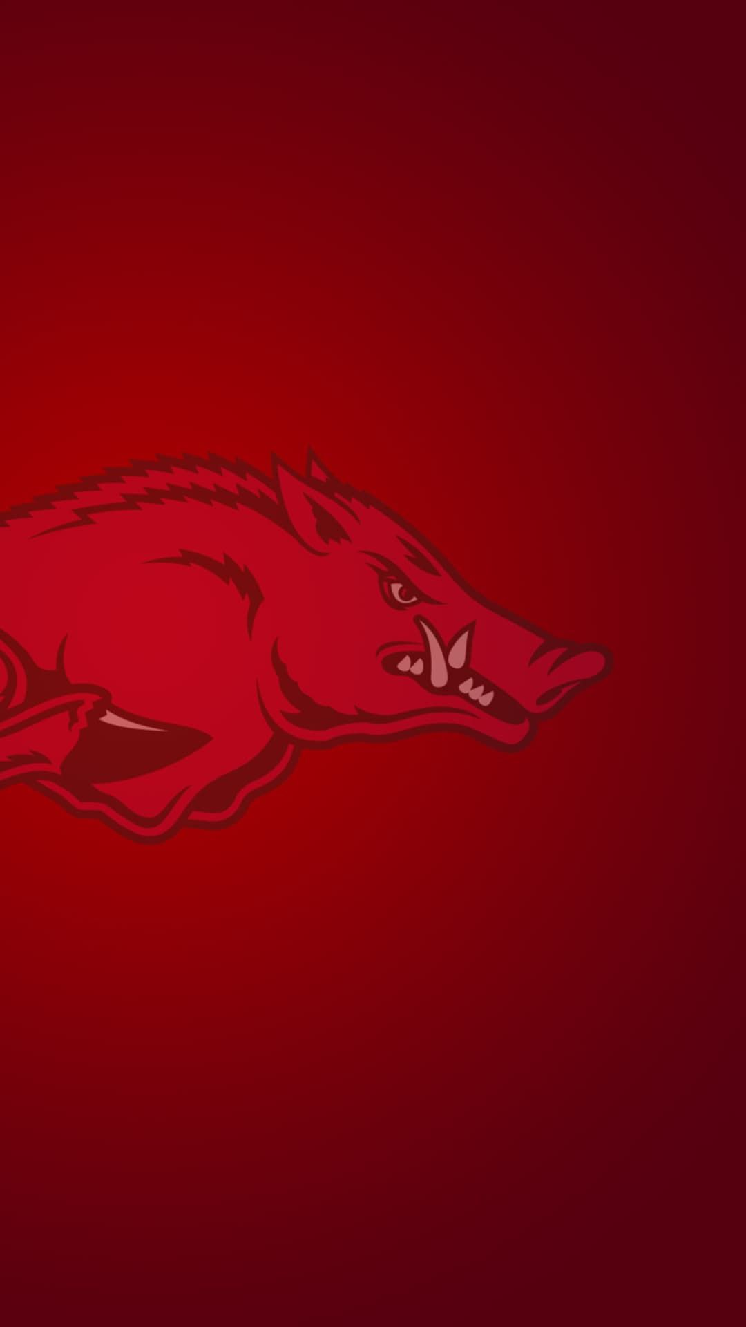 Http Mobw Org 16468 Arkansas Razorbacks Wallpaper Android Html Arkansas Razorbacks Wallpaper And Arkansas Razorbacks Football Razorback Painting Razorbacks