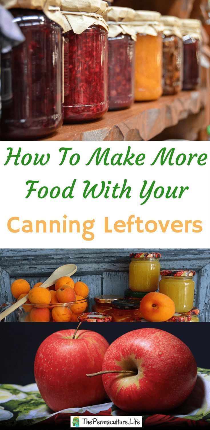 Canning food is great, but it can have a large amount of waste. Home-canned foods are so much fresher and tastier than the old canned stuff you get from the store. food is great, but it can have a large amount of waste. Home-canned foods are so much fresher and tastier than the old canned stuff you get from the store.