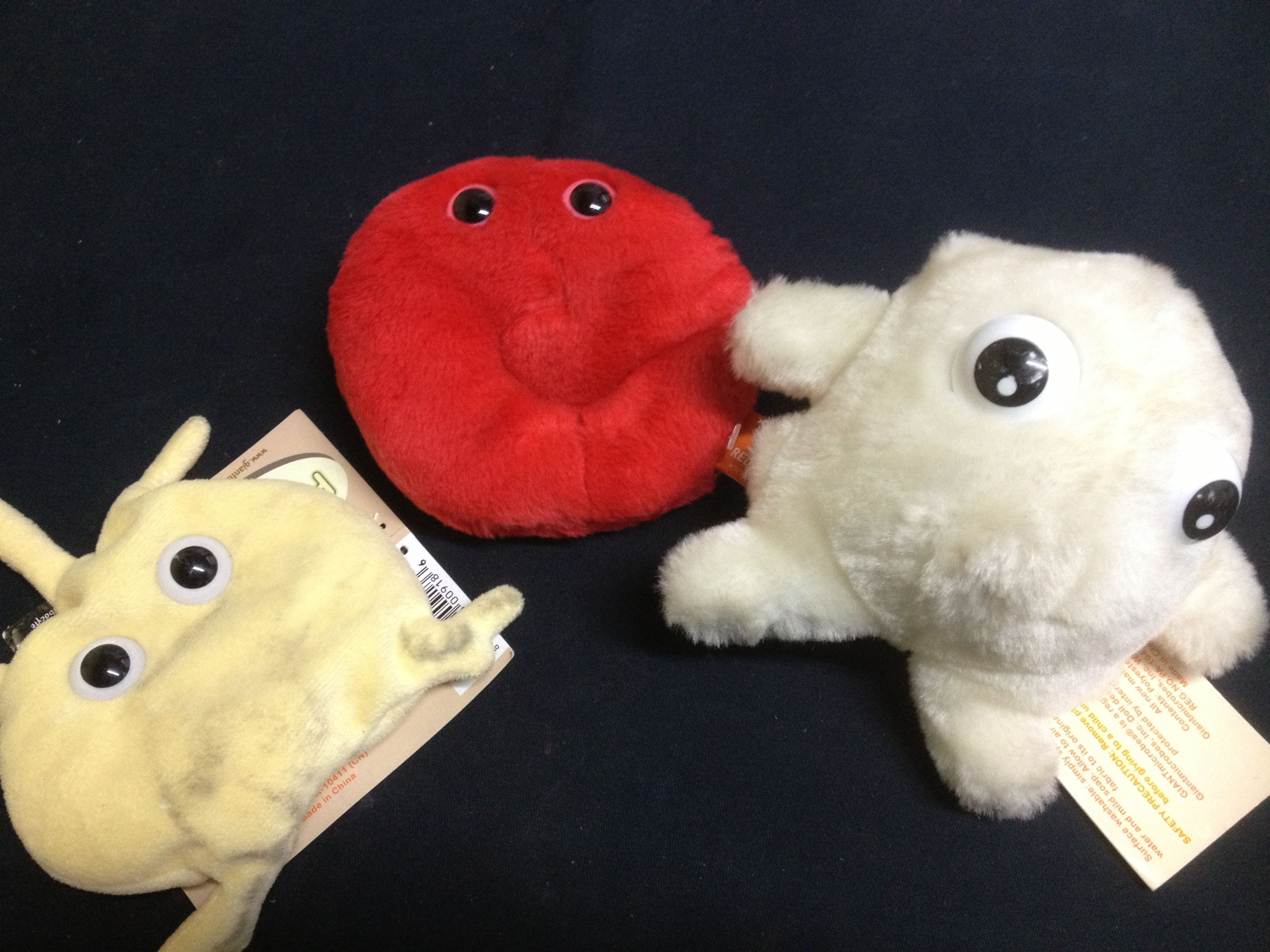 Giant Microbes Used For Teaching About Blood Cells In A