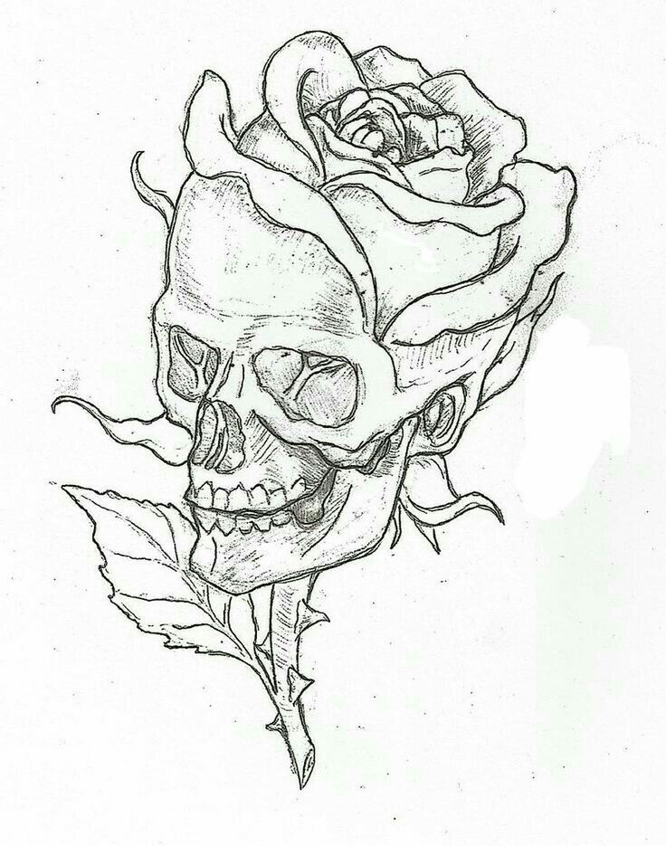 Pin By Kady Eva On Tattoo This Skull Art Pencil Drawings Sketches