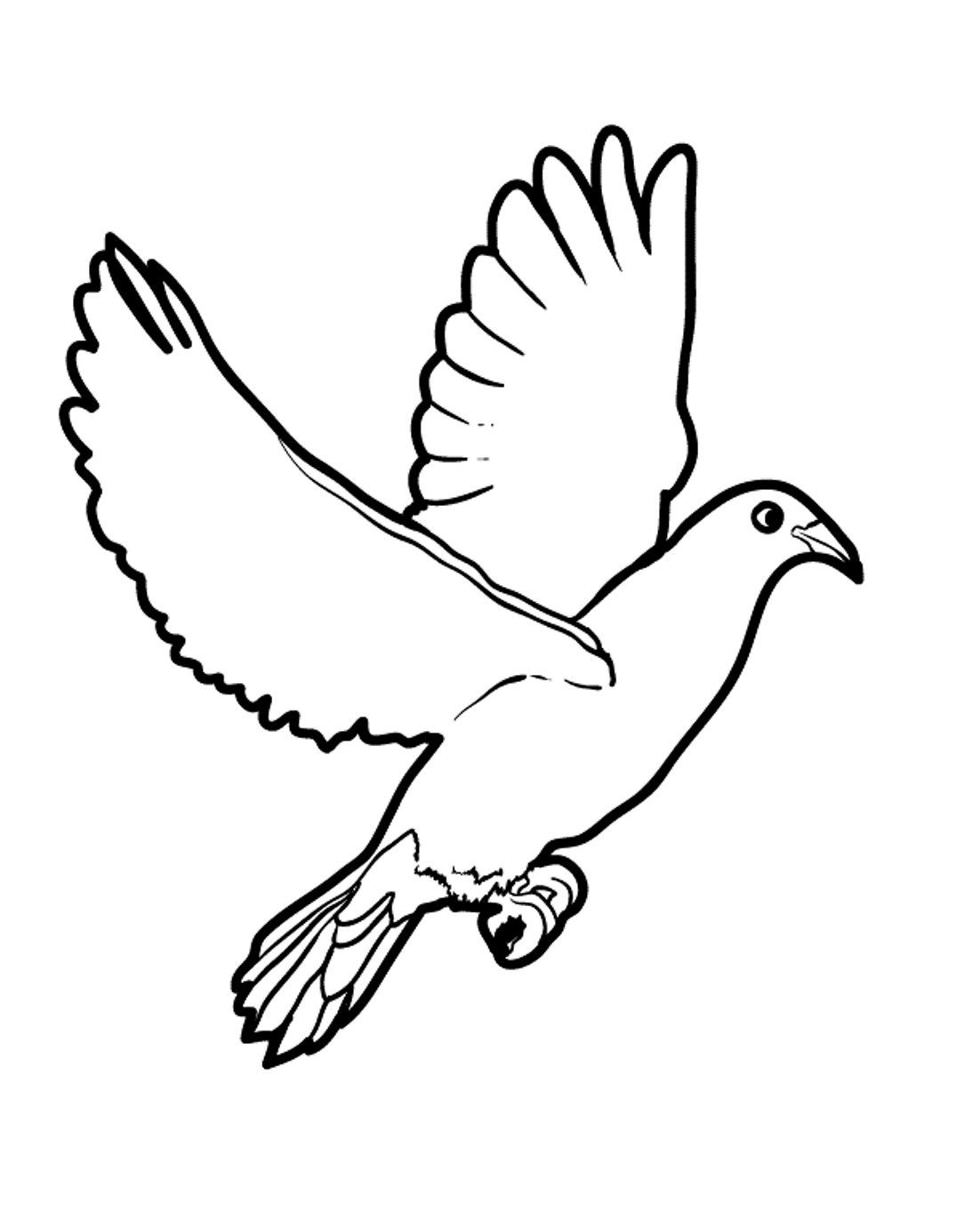 25 Best Image Of Bird Coloring Page Albanysinsanity Com Bird Coloring Pages Bird Coloring Page Bird Coloring