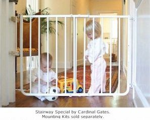 The Outdoor Version Of This Gate Is Great For Blocking Deck Stairs.  #childsafety #