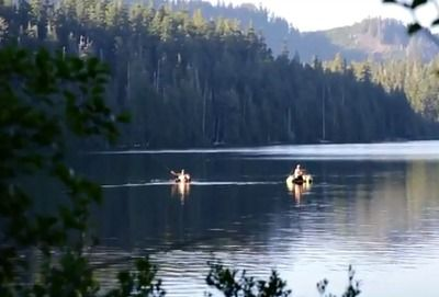 Camping in Mt Hood National Forest - good descriptions of areas