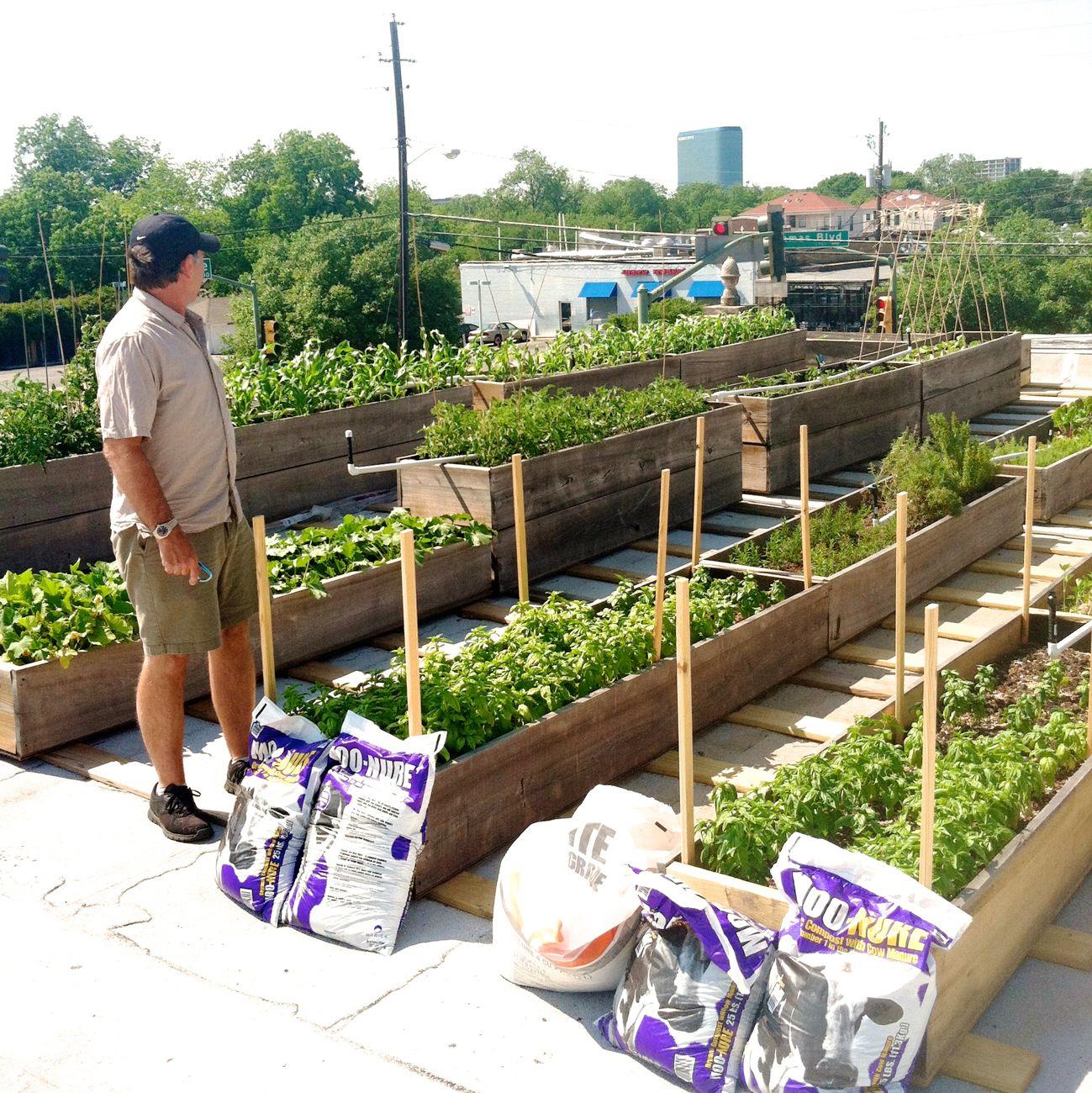 DFF : The Corner Market\'s secret rooftop garden - Lakewood/East ...