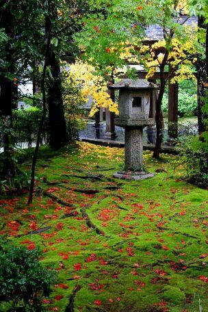 Ninaji, Kyoto, Japan