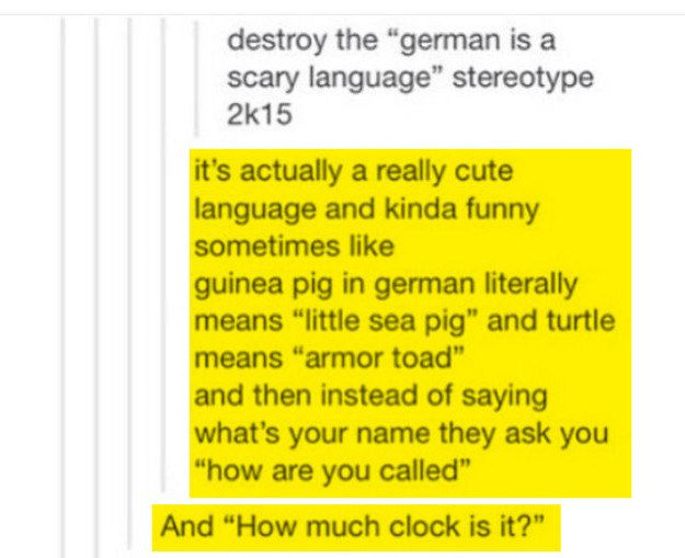 Photo of 19 Prove that you shouldn't translate the German language so easily
