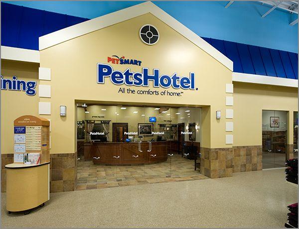 Petsmart Hotel Room Standard