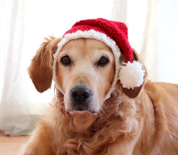 4e97d5d5d22bf Santa Hat for Dogs Dog Santa Hat Holiday Dog Hat Christmas