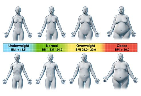 Slideshow Abbreviations Your Doctor Uses What S My Body Type Health Ways To Gain Weight