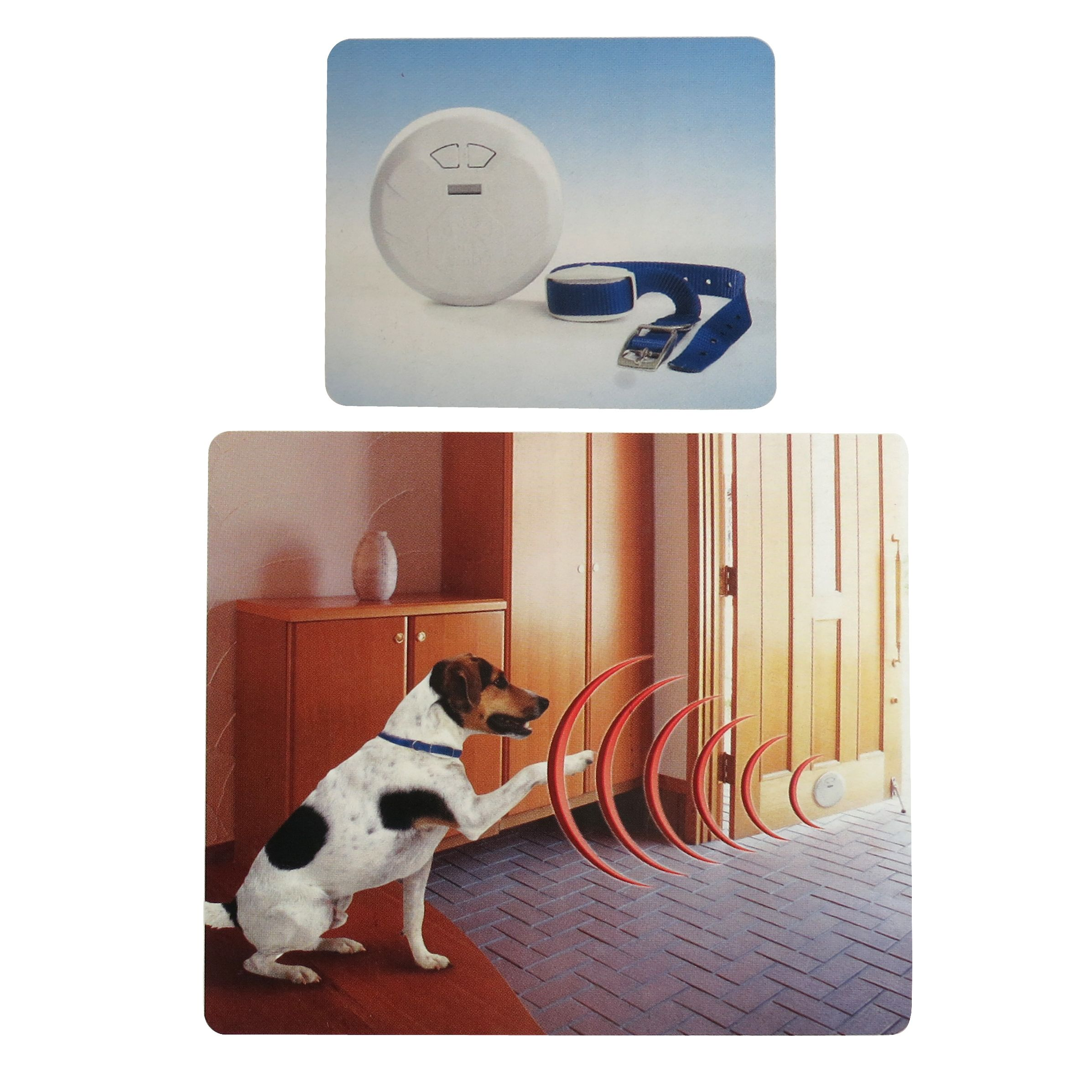 Pets Manager #Digital Invisible Fence Indoor Version | For Babies ...