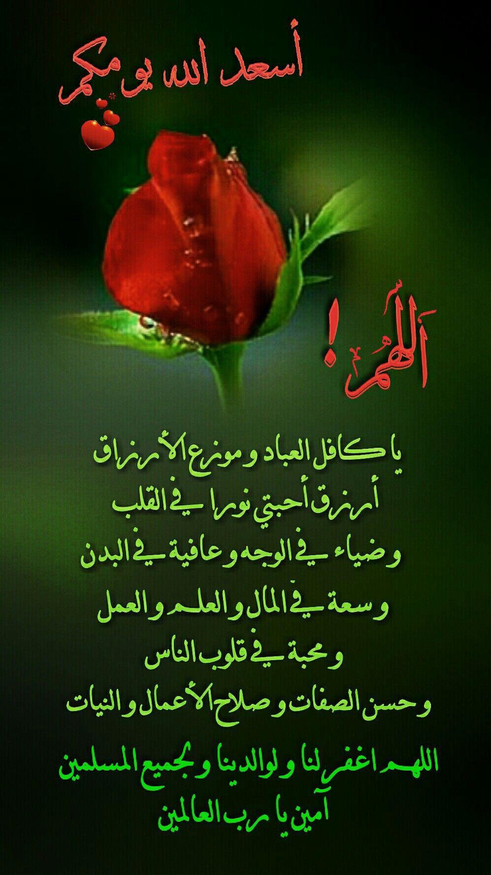 Epingle Par Ranya Anis Sur صباح الخير Citations Arabes Bonsoir