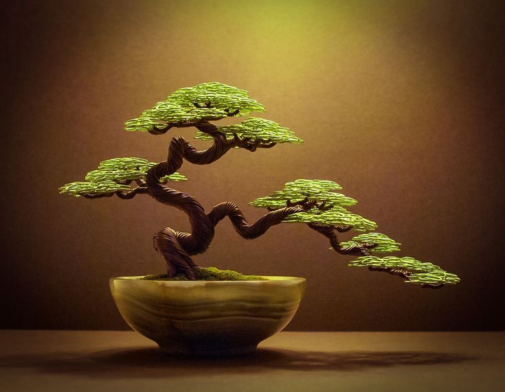 Bonsai Tree Sculptures made from Aluminium Wire