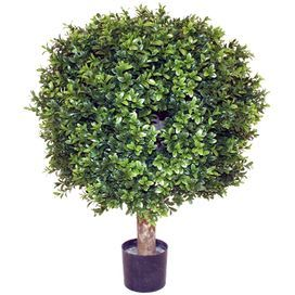 "Indoor/outdoor faux boxwood with an authentic wood stem.Product: Faux plantConstruction Material: Wood, silk-plastic and plasticColor: Green and blackFeatures: Durable and maintenance freeNatural appearanceFor indoor and outdoor use Dimensions:  28"" H Cleaning and Care: Wipe with damp cloth"