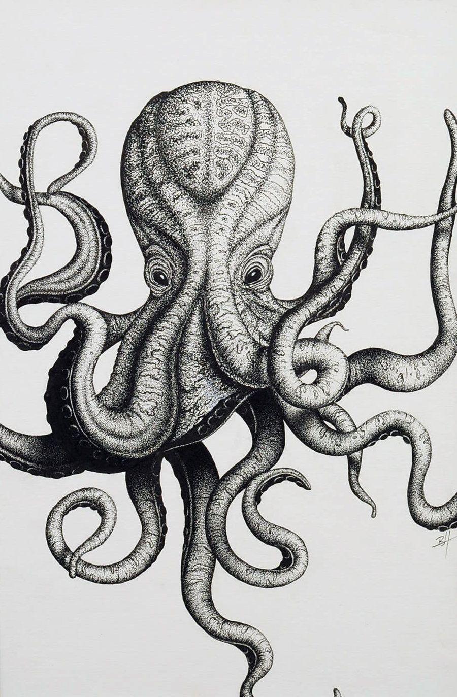 Stippled Octopus Initials By Art Brandonhubschmaniantart On